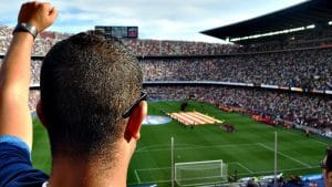 Soccer fan in stadium